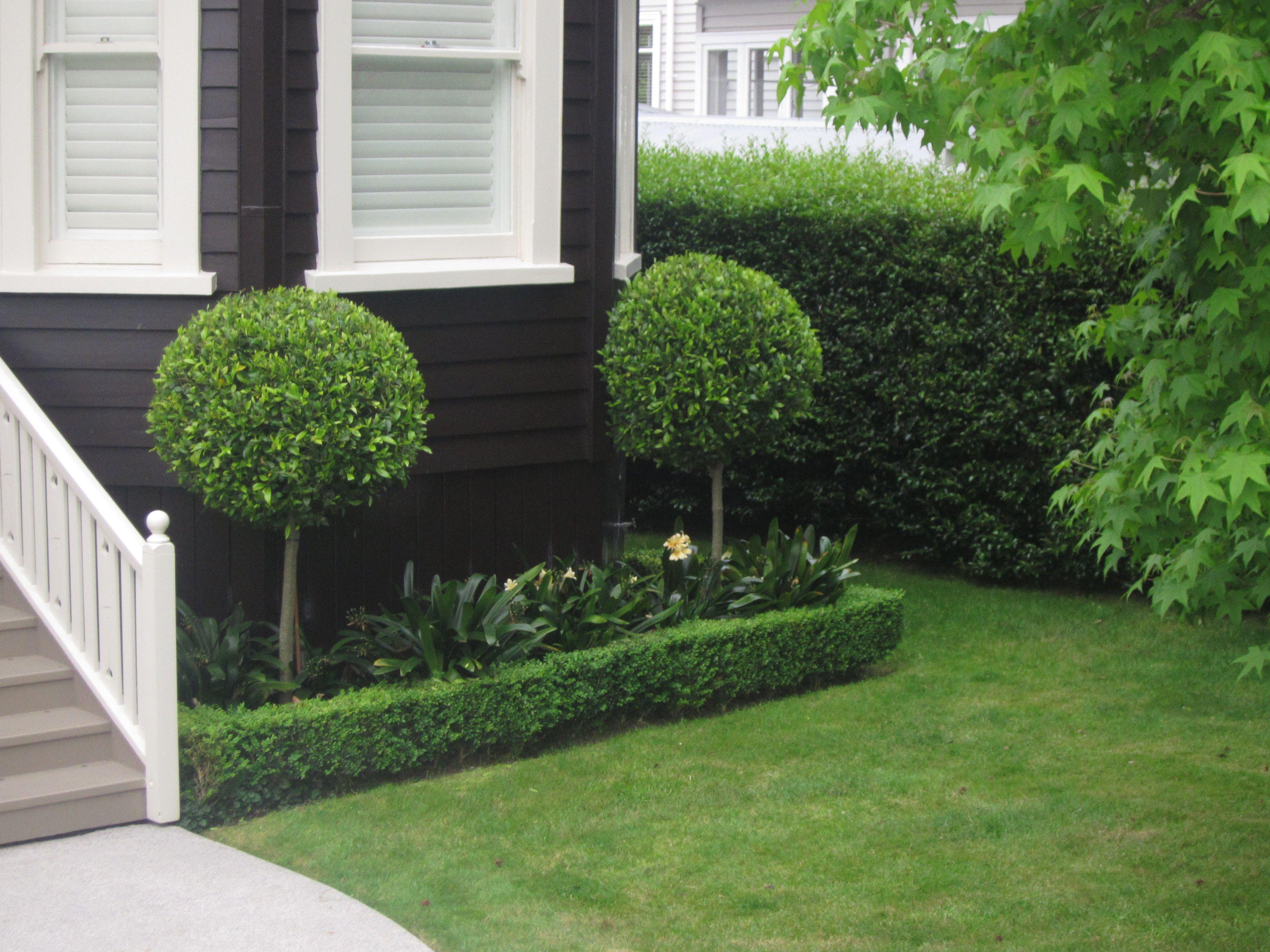 Topiary Garden Design Ideas Part - 30: Small Gardens · I Do Like Laurel Topiary Balls - Along The Entrance Path?