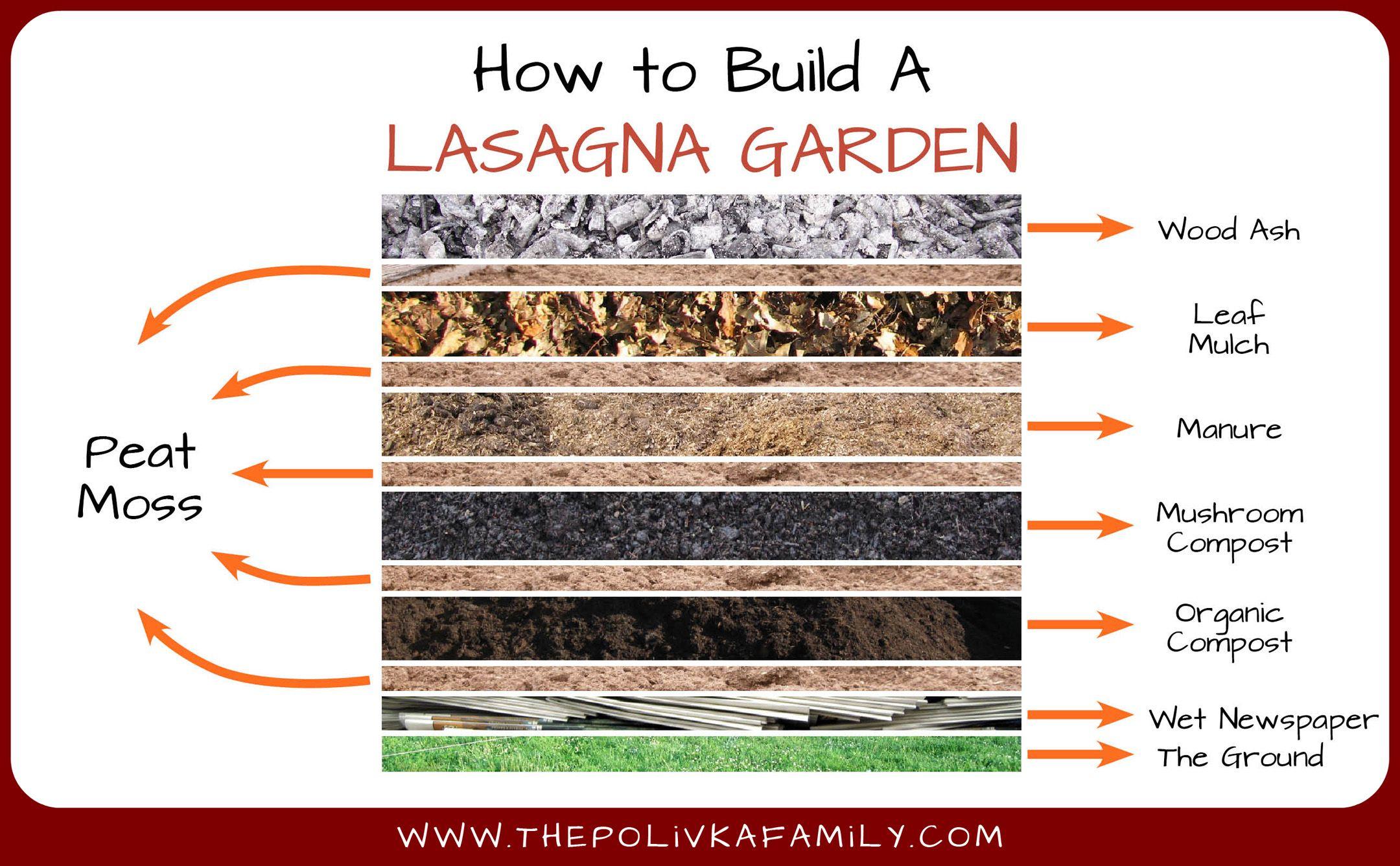 Another Way To Create A Lasagne Garden Lasagna Gardening Fall