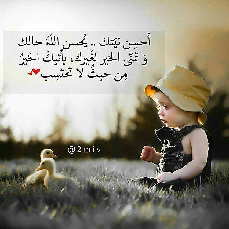 منى الشامسي Wise Quotes Words Quotes Prayer For The Day