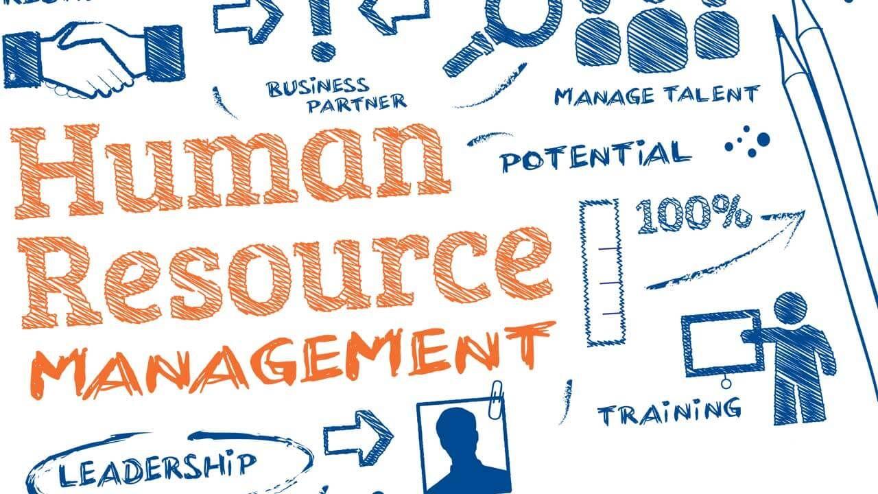 Where Can Human Resource Management Work Human Resource Management Teaching Skills Human Resources