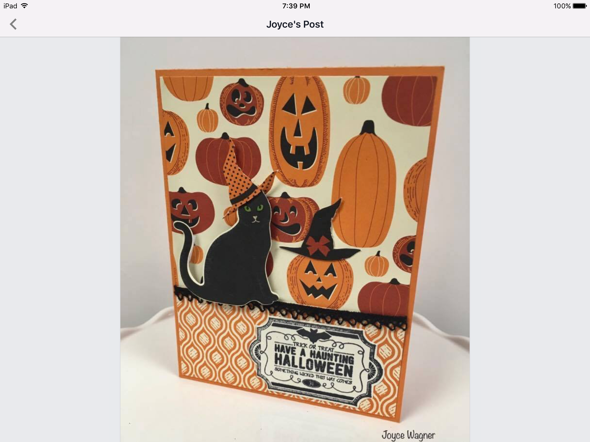 SU Halloween Spooky Cat Labels to Love Spooky Night dsp