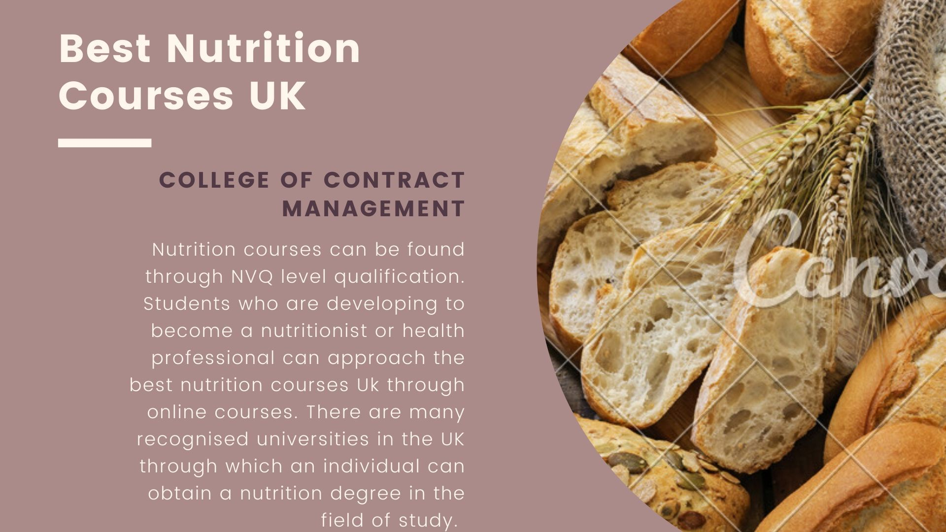 Best Nutrition Courses Uk In 2020 Nutrition Course Nutrition Nutrition And Dietetics