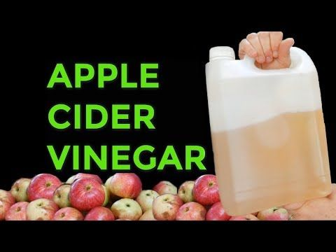 YouTube in 2019   Apple cider vinegar, Making apple cider