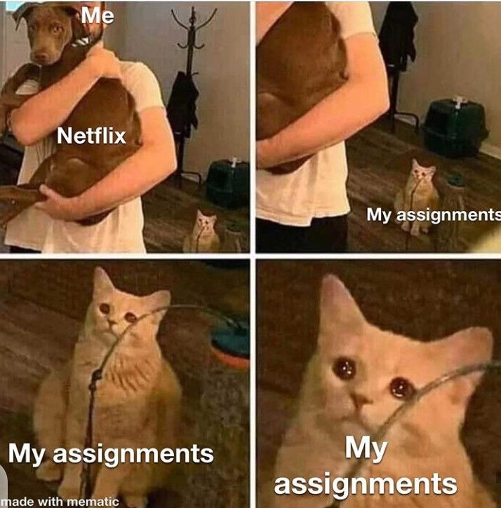 Assignments better move on. ���