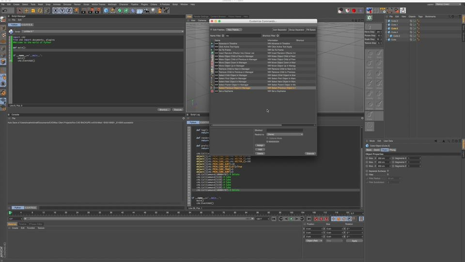 C4D Tutorial: Making Python Scripting As Easy As Possible For Artists on Vimeo