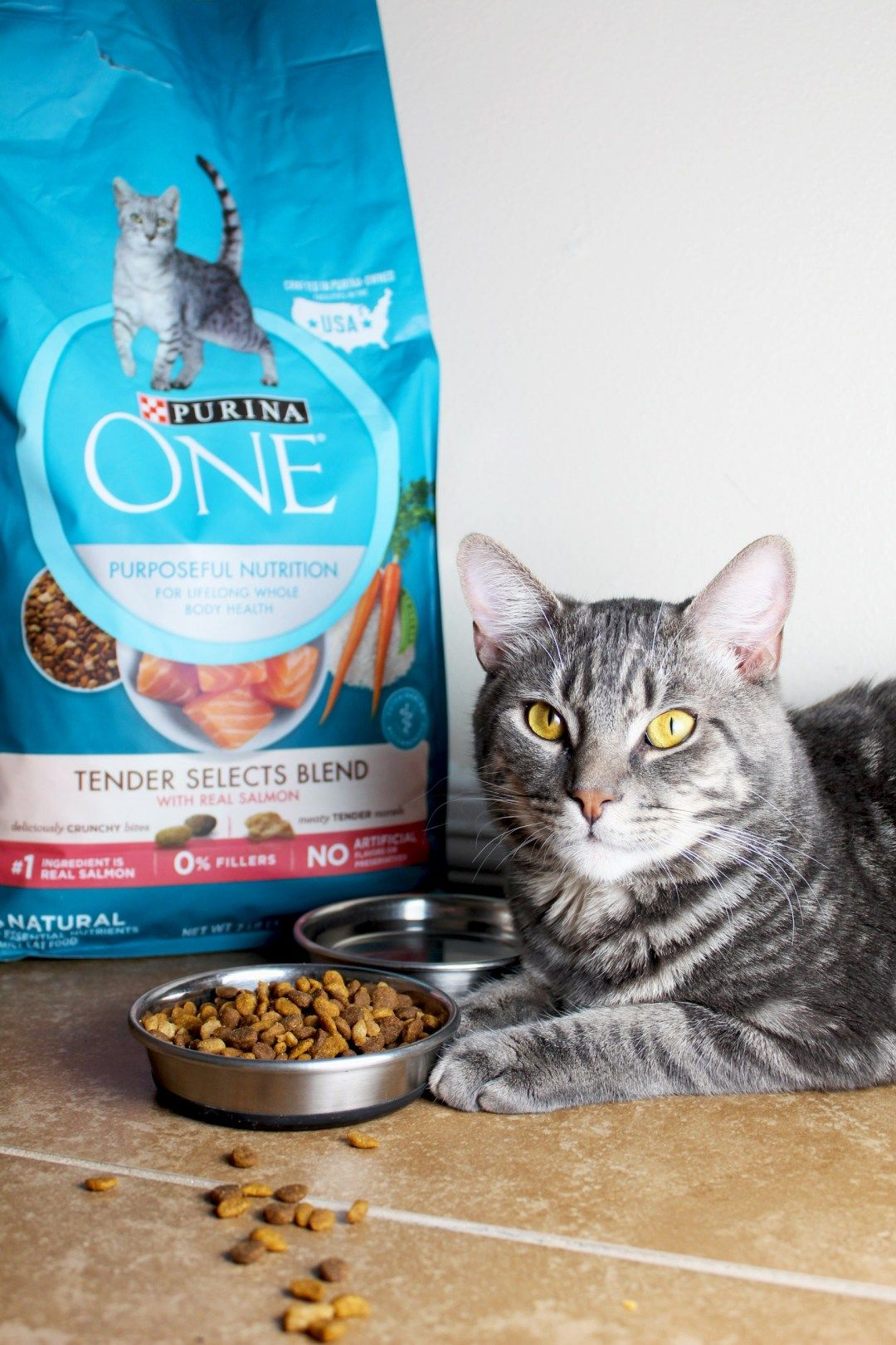 Purina One Cat Food Purina One 28 Day Challenge Purina One Tender Selects Purina One Sensitive Skin And Stomach Cat Care T Purina Best Cat Food Healthy Cat