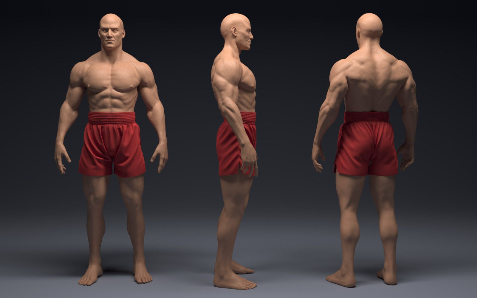 Male anatomy study, Joaquin Cossio on ArtStation at https://www ...
