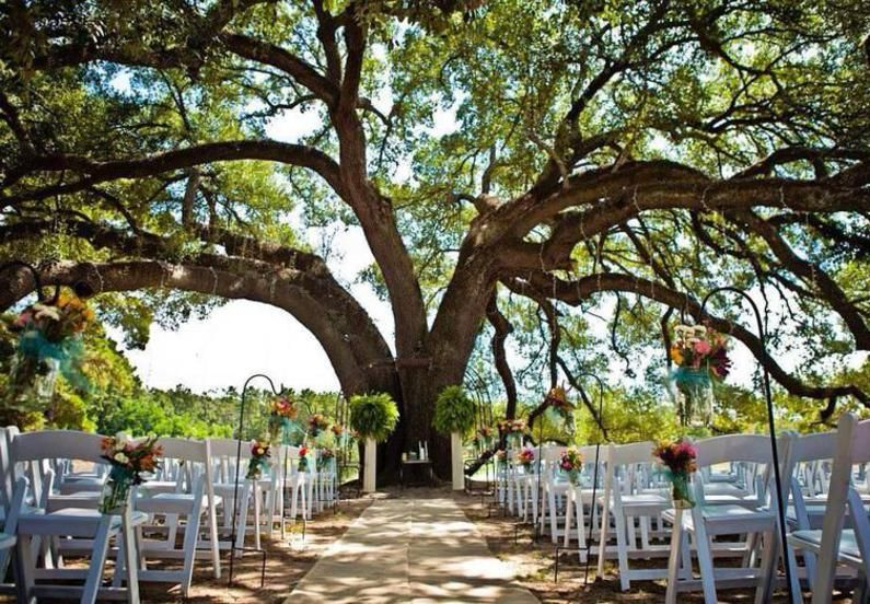 This tree!!! Pike Lake Ranch in Montgomery, TX | Wife & B Mom ...