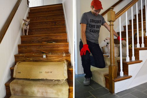 Best Removing Old Stair Carpet And 600 Staples Carpet Stairs 400 x 300
