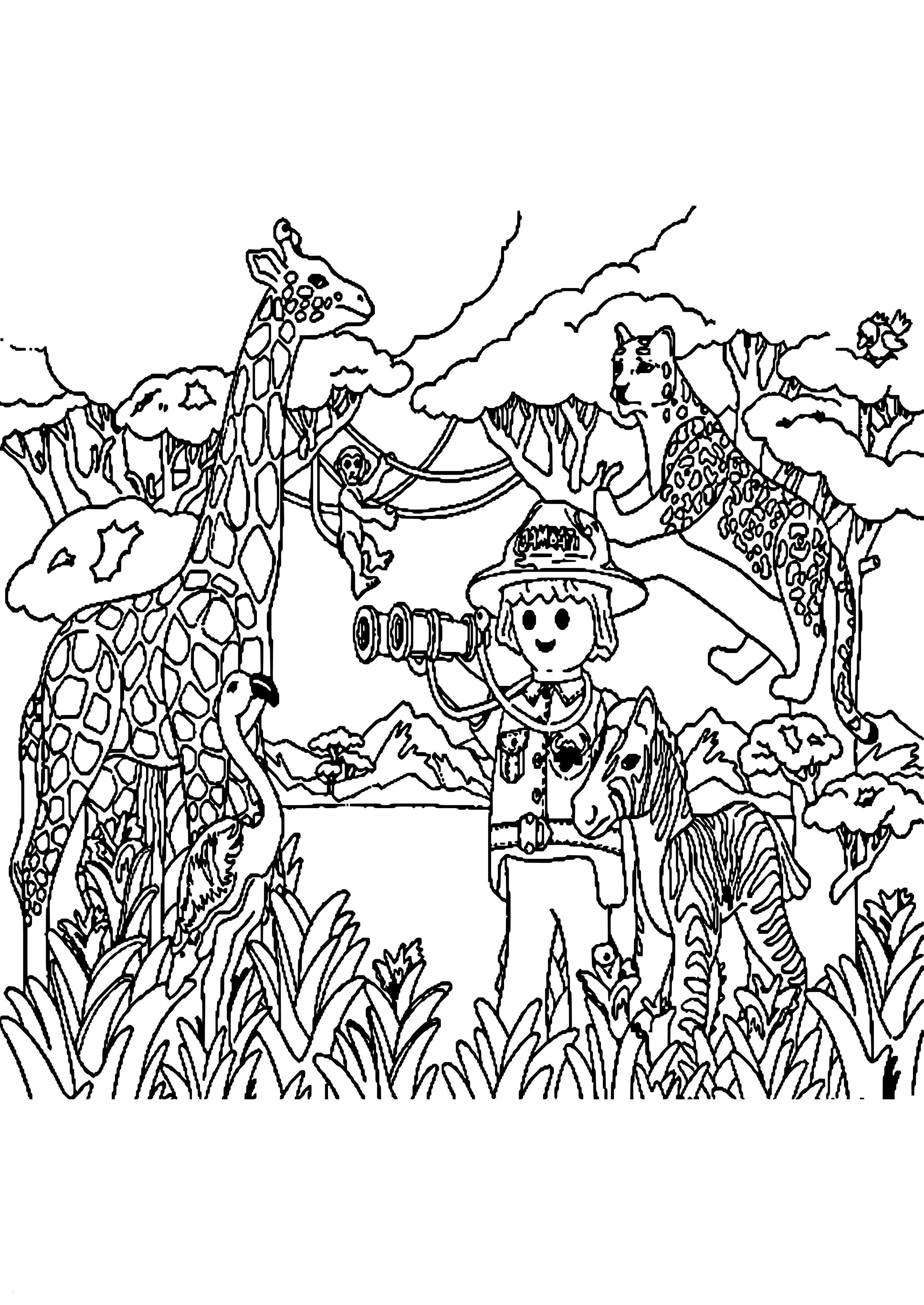 frisch malvorlagen jaguar tiere  pencil drawings