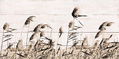 geweißte Holzbretter digital bedruckt Bilder Artland Blumen und