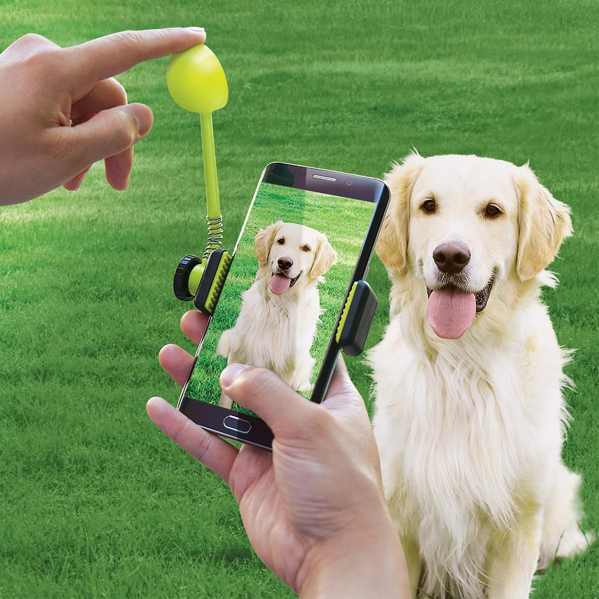 Pet Ture Perfect Treat Launcher Pet Camera Gifts For Pet Lovers
