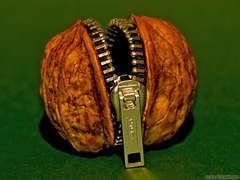 From a walnut shell and a zipper you can buy a mini purse ... From a walnut shell and a zipper you can buy a mini purse ...