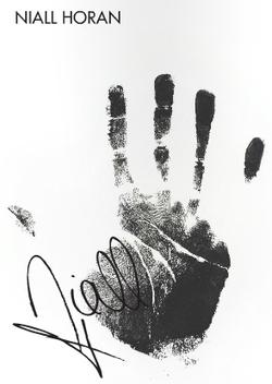 Niall S Handprint One Direction Niall Horan James Horan