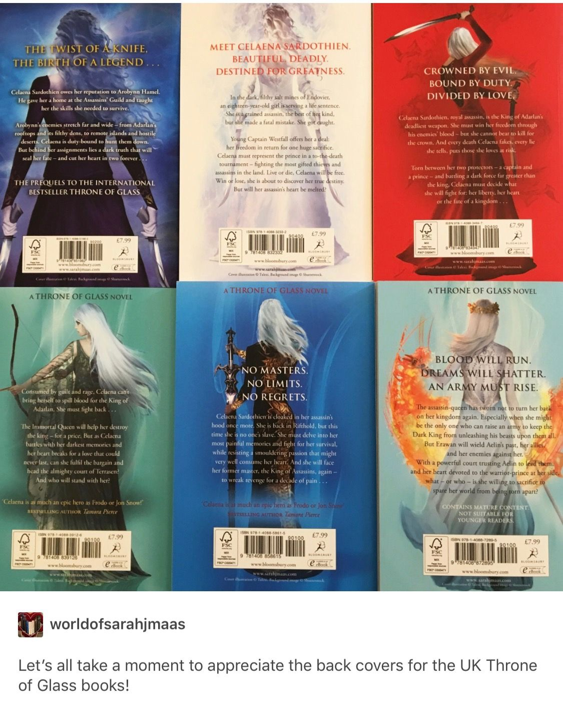 Back Covers Of Uk Tofg Books With Images Throne Of Glass