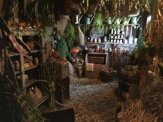 Minecraft Greenhouse Interior
