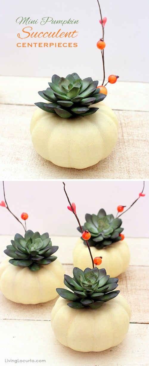 Mini Pumpkin Succulent Centerpiece Craft | 17 Cool Pumpkin Decorating Ideas