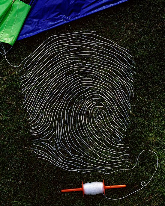 Giant Fingerprints Made of Everyday Materials by Kevin Van Aelst.