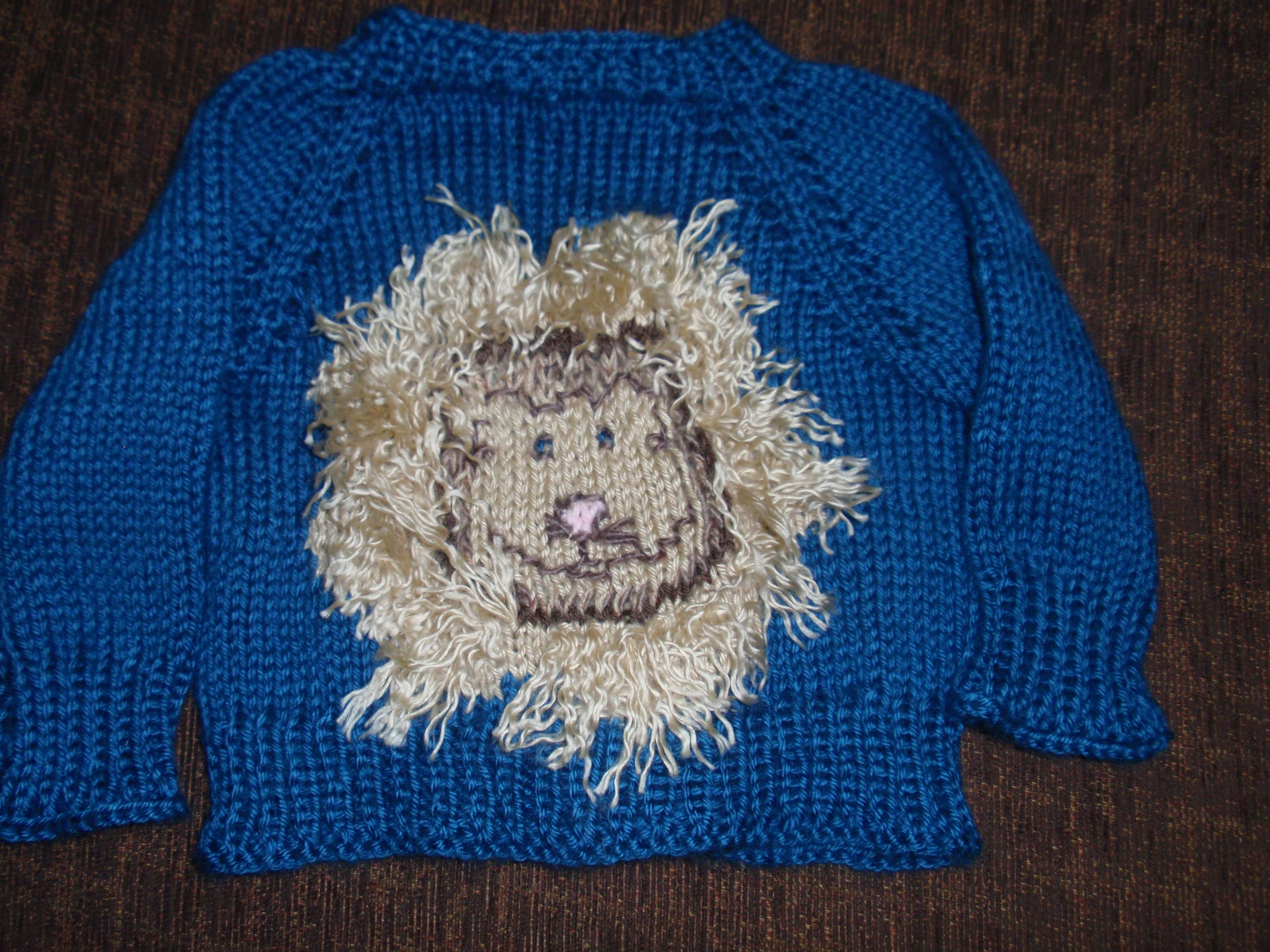 Roar baby sweater My Knitting Projects Pinterest