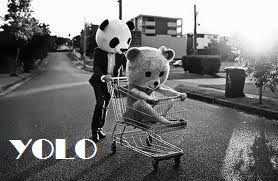 True meaning of YOLO.