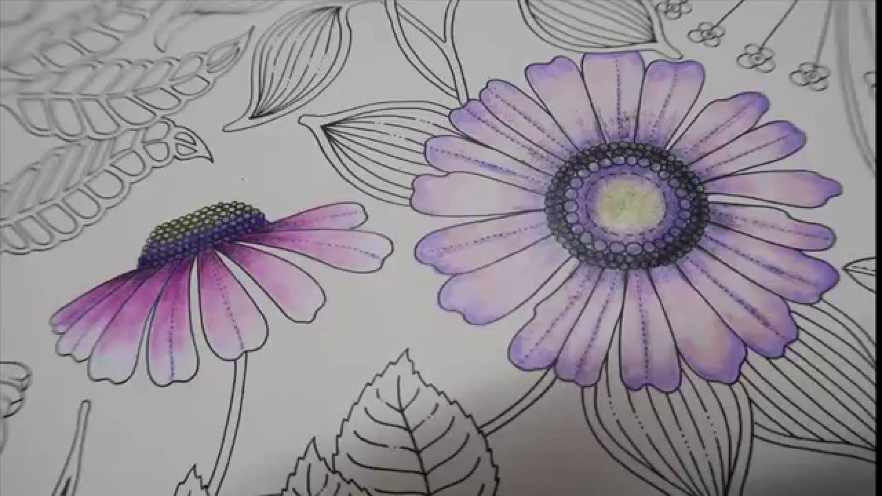 Hi Guys In This Video I Will Be Coloring A Flower From Secret Garden Book By Using Prismacolor Premier Colored Woodcase Pencils