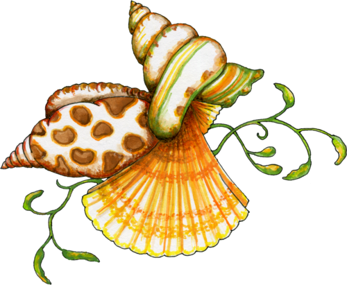What S A Png File And How Do You Open One Scary Halloween Coloring Pages Shell Graphic Sea Art