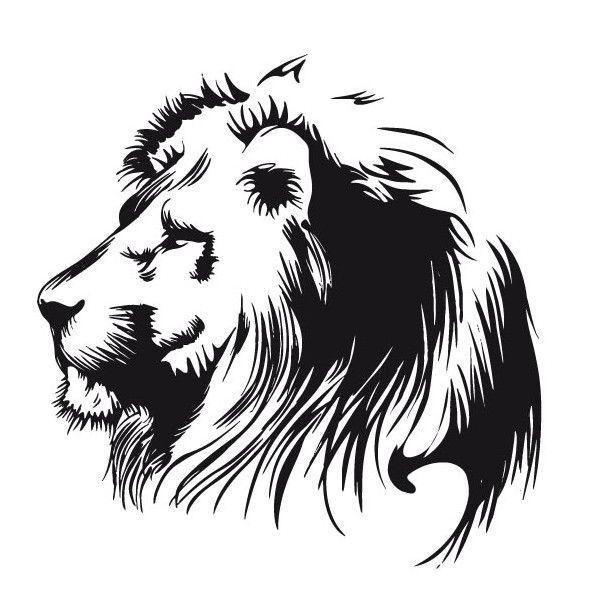Dessin De Tete De Lion