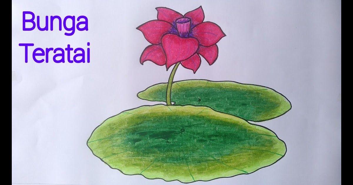 Gambar Bunga Teratai Untuk Mewarnai Menggambar Bunga Teratai Yang Mudah Dan Bagus Cara Menggambar Bunga Mewarnai Dengan Cray Bunga Teratai Gambar Bunga Bunga