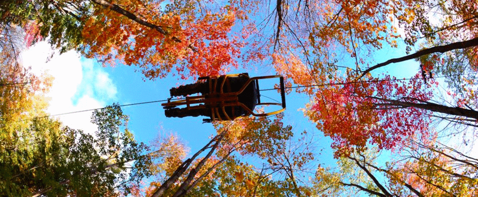 """You Can Now Ride """"Sky Bikes"""" Through The Forest In Quebec"""