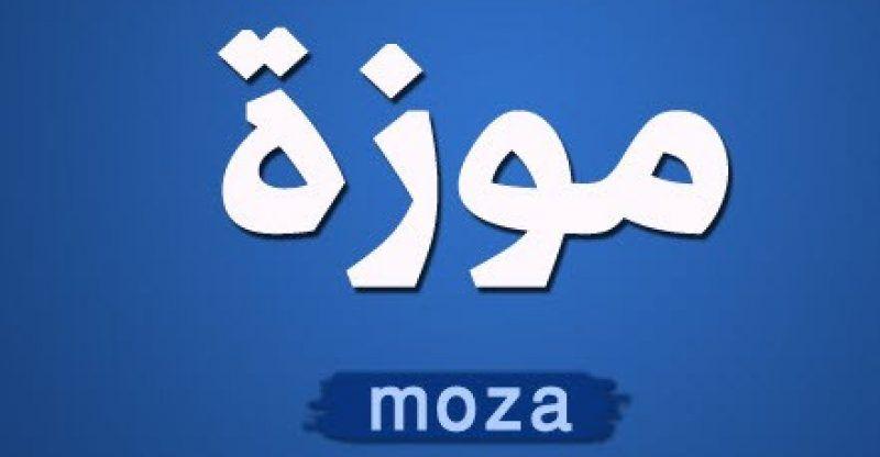 ما معنى كلمة مزة بالمصري – مزه بالانجليزية وفى اللغة العربية | Vimeo logo,  Company logo, Gaming logos