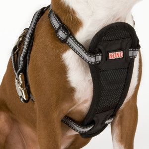 Kong Adjustable Dog Harnesses Petsmart Dog Harness Reflective