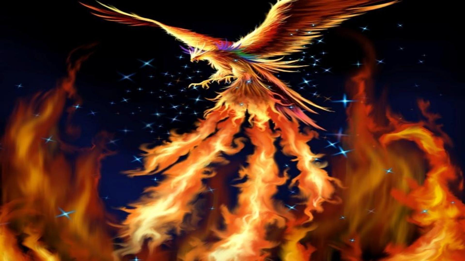 Downloads Picture Phoenix Bird 1280 800 Phoenix Images Wallpapers 42 Wallpapers Adorable Wallpapers Phoenix Wallpaper Phoenix Images Phoenix Bird