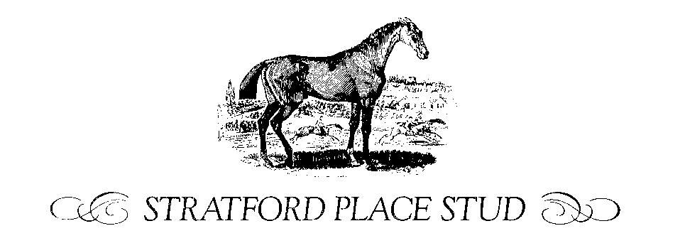 Stratford Place Stud - Mark Wall