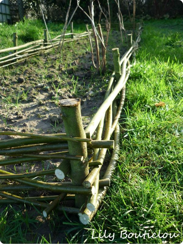 M. Bouticlou au jardin: le tressage de bordures en branches ...