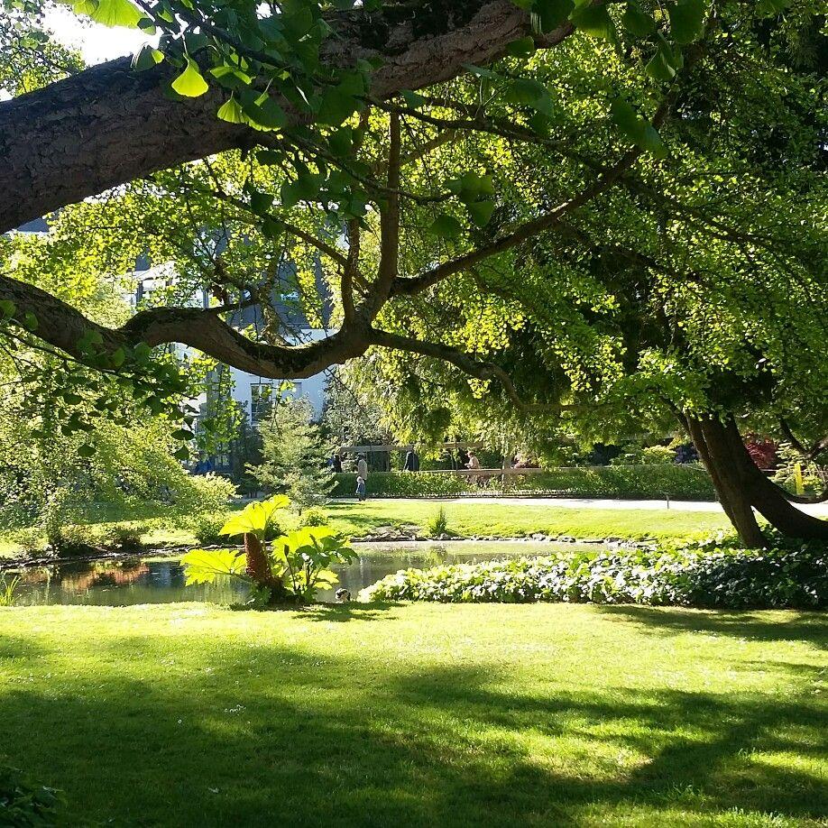 Tours Le Jardin Botanique Jardin Botanique Jardins Botanique