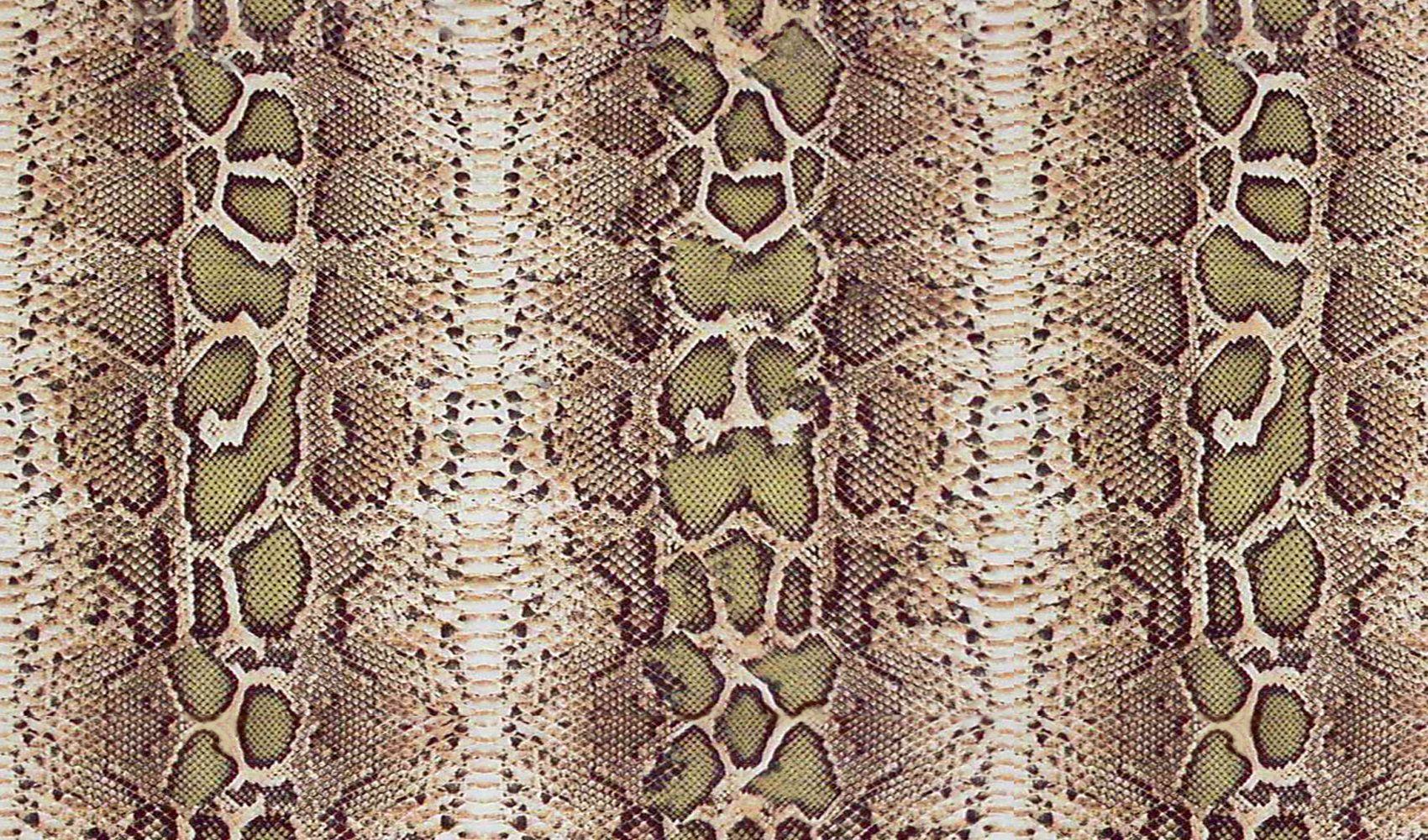 Snakeskin Print Wallpaper Free Download Hd Widescreen
