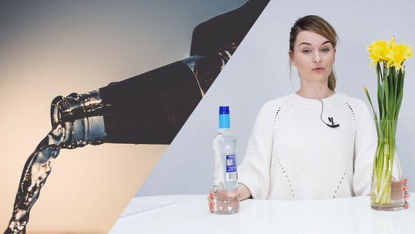Vodka kann gezielt als Allzweckwaffe eingesetzt werden. Wir zeigen Ihnen was man mit der Spirituose alles anstelle kann.