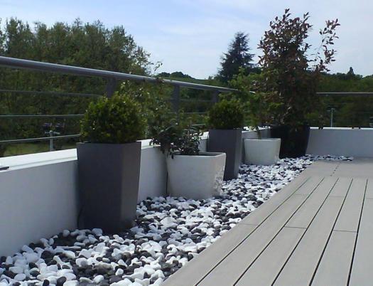 jardin plantes et cailloux blanc et noir - Recherche Google ...