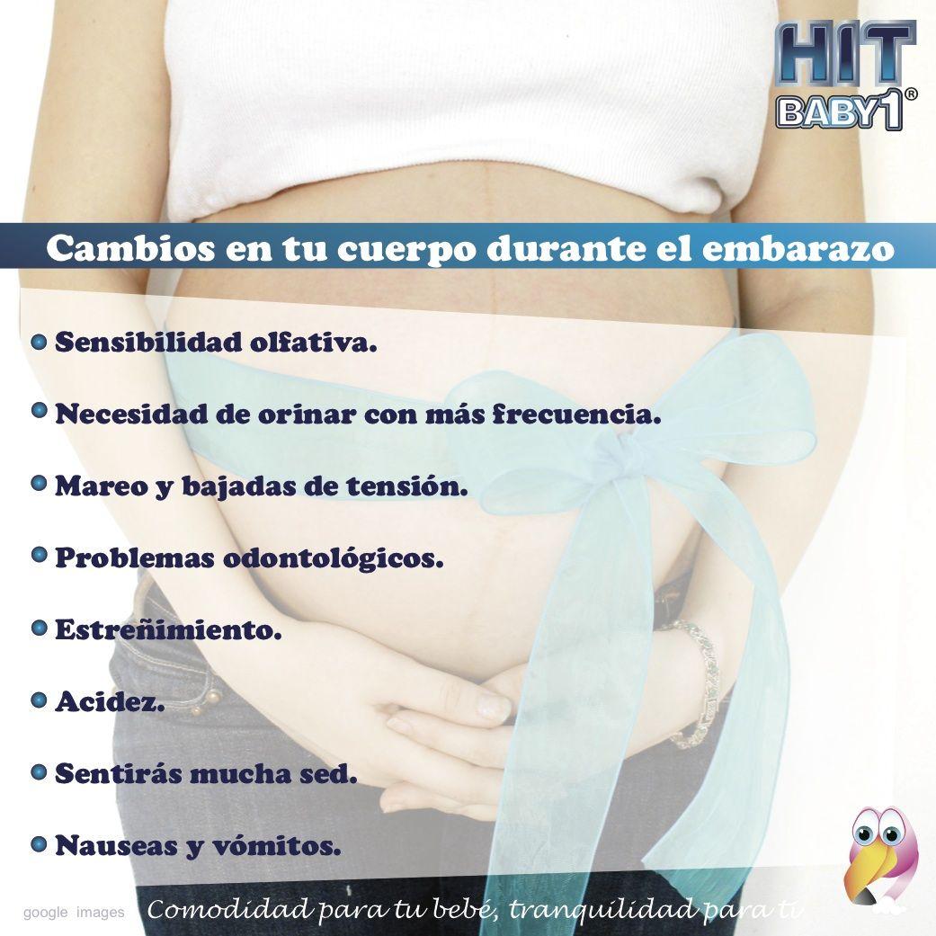 cambios en el cuerpo durante el embarazo
