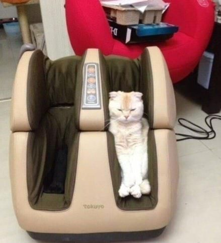 Claude finds the new Pedi-spa massage machine to be quite rejuvenating. He gives it five stars.~~ Houston Foodlovers Book Club