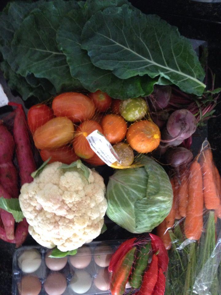 Vegetais orgânicos. Paleo diet. Salada todo dia. Emagrecimento saudável . Low carb.