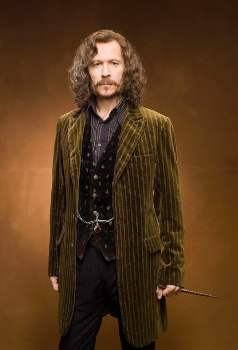 Get your dog ready for halloween with our top picks for the best pet halloween costumes for 2020. Sirius Black Cosplay in 2021   Sirius black, Sirius black costume, Black costume