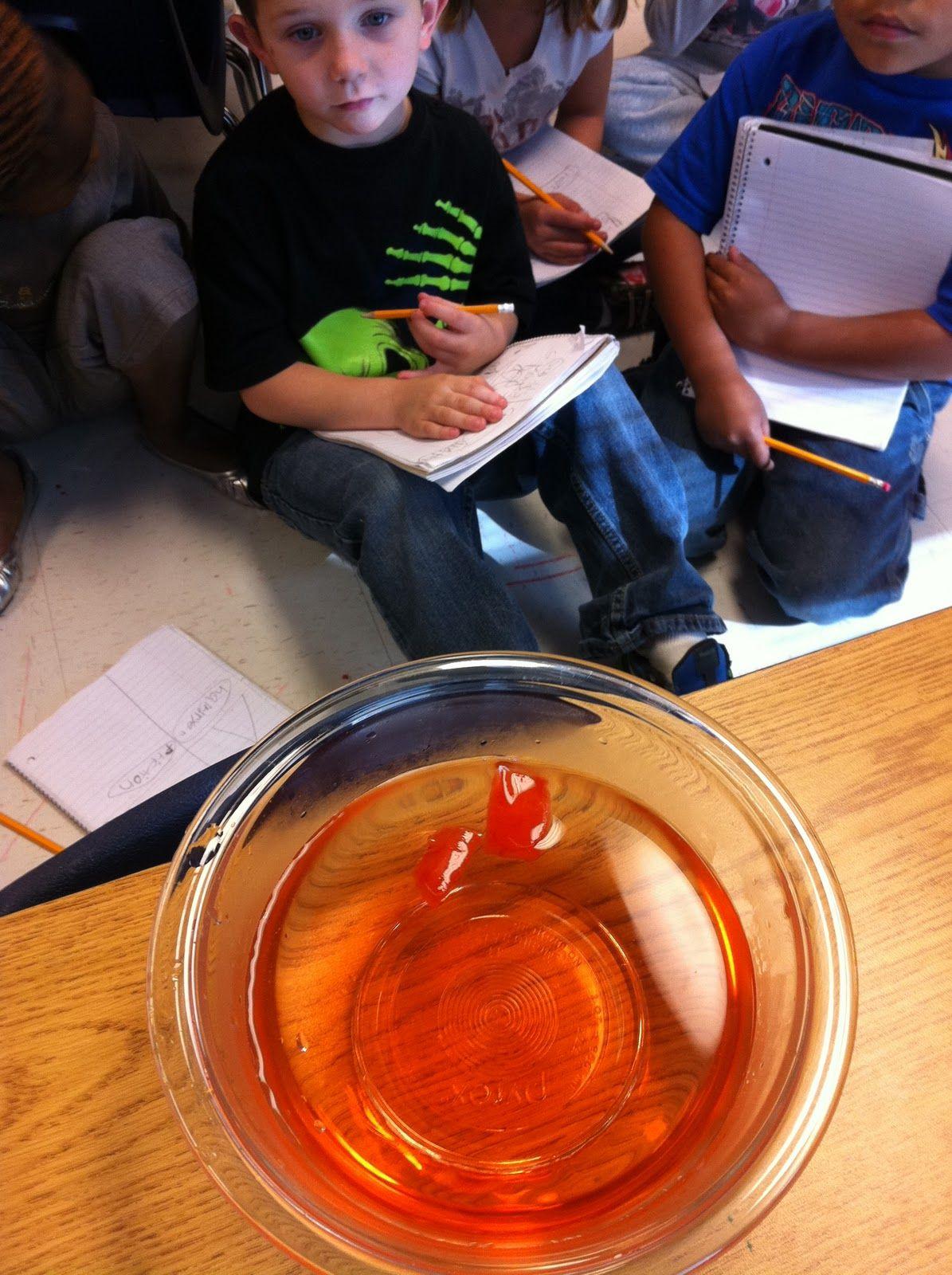 Fun In First Grade Heat Can Change Matter