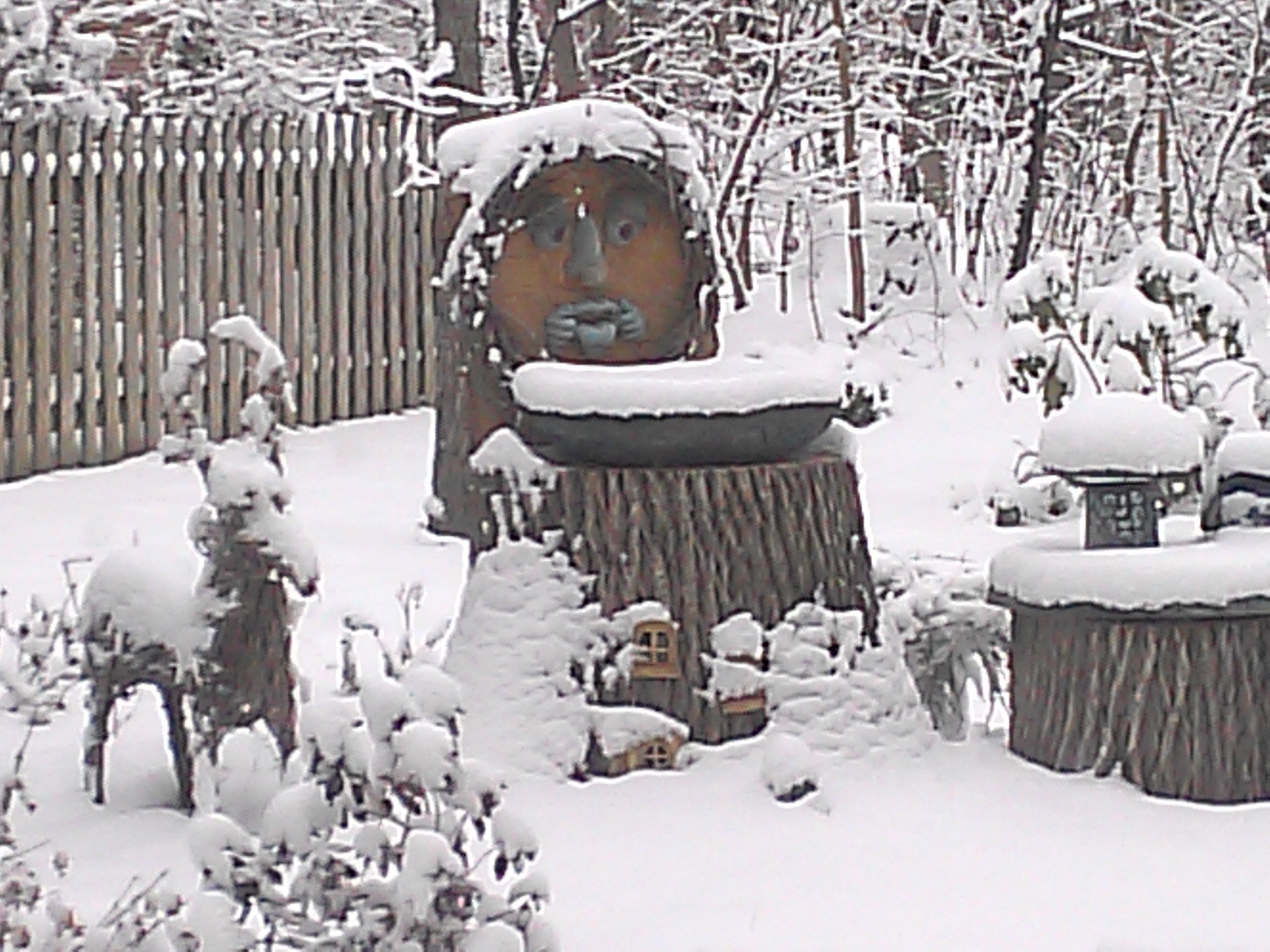 TINA KLOS, HARRISONBURG 	 This is a snowscape of my backyard complete with 'OLD MAN WINTER' #WHSVsnow
