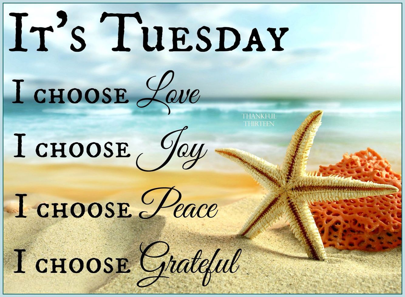 It's Tuesday | Happy tuesday quotes, Tuesday quotes, Happy tuesday morning