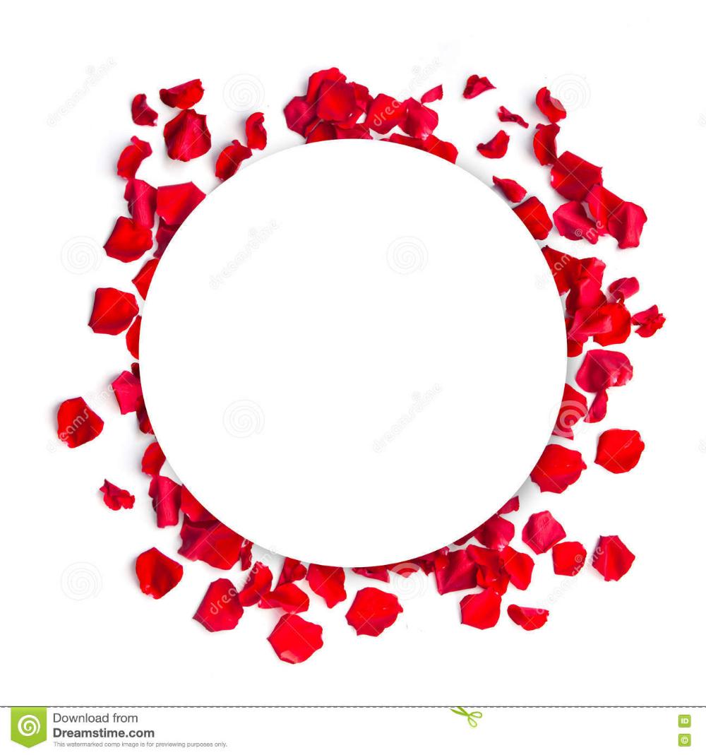 лепестки по кругу - Поиск в Google | Круги, Орнаменты