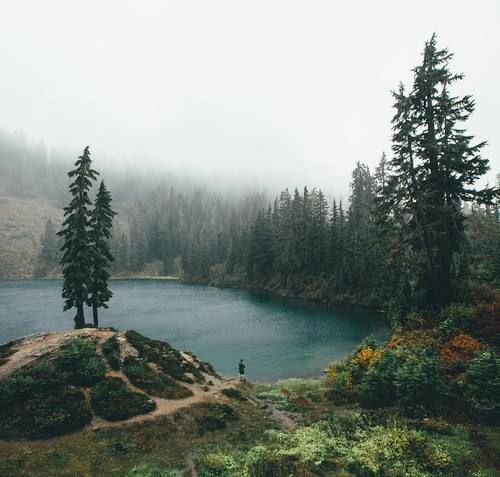 Adventure #forest #lake #adventure #explore #nature #travel #mountain #outdoors #followback #random #outdoor