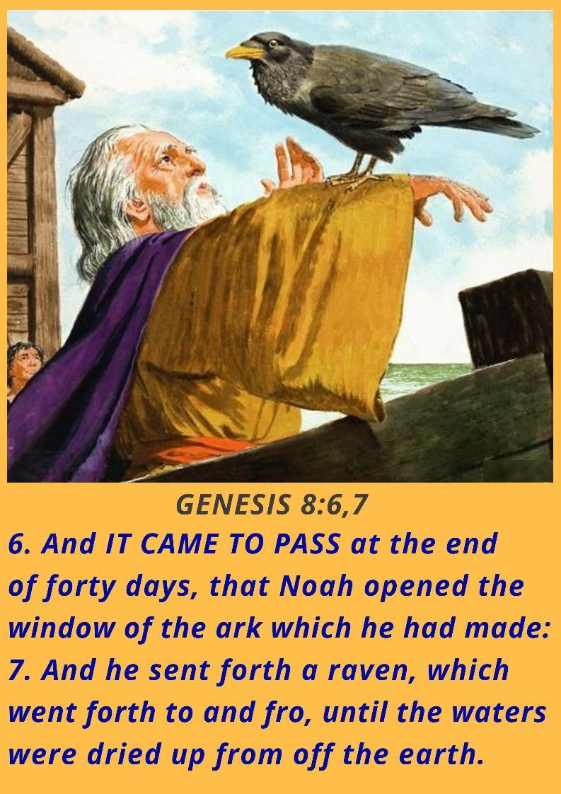 Genesis 867 genesis eternal life things to come