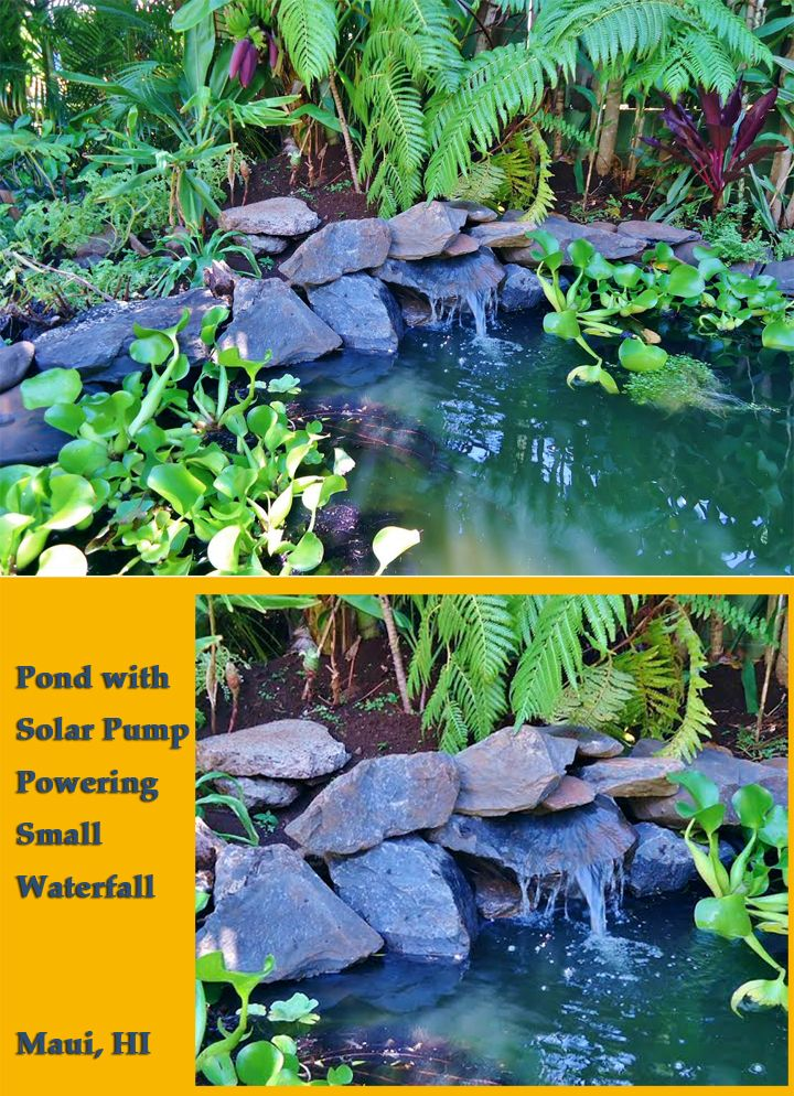 Hawaiian Pond With Small Waterfall Ed By Solar Pump Untouched Photo From Customer