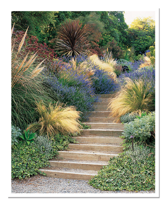 Gardening With Your Senses Tips From A Martha Stewart Living Magazine Garden Editor The Impatient Gardener Garden Stairs Hillside Garden Garden Tours